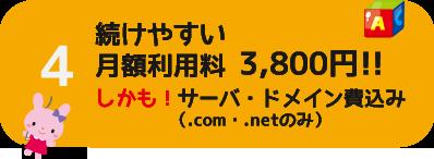 続けやすい月額利用料3,800円(サーバ・ドメイン費込み)